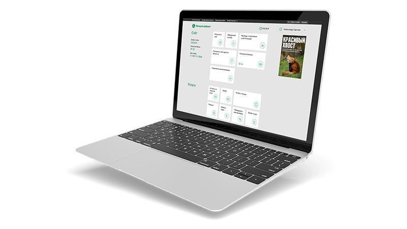 Долг лицевого счета в Мегафоне: оплата задолженности онлайн