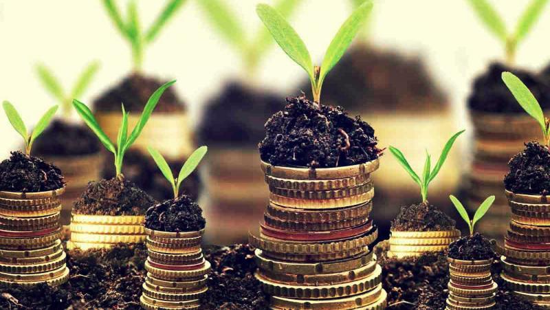 Долг по земельному налогу